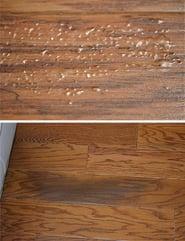 Moisture on Hardwood Floors Courtesy of https://www.woodfloorbusiness.com/
